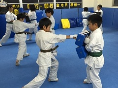 karate-training-home